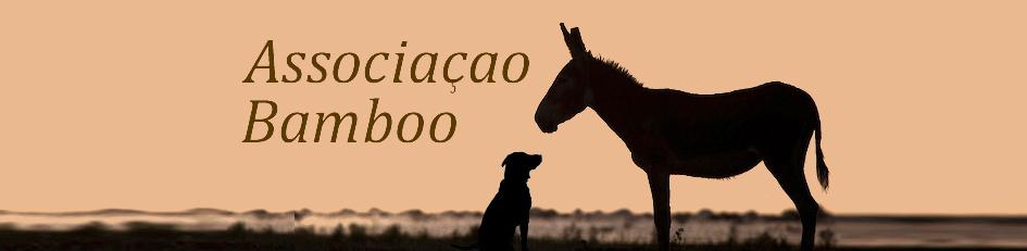 Bamboo Dog Shelter Algarve Portugal